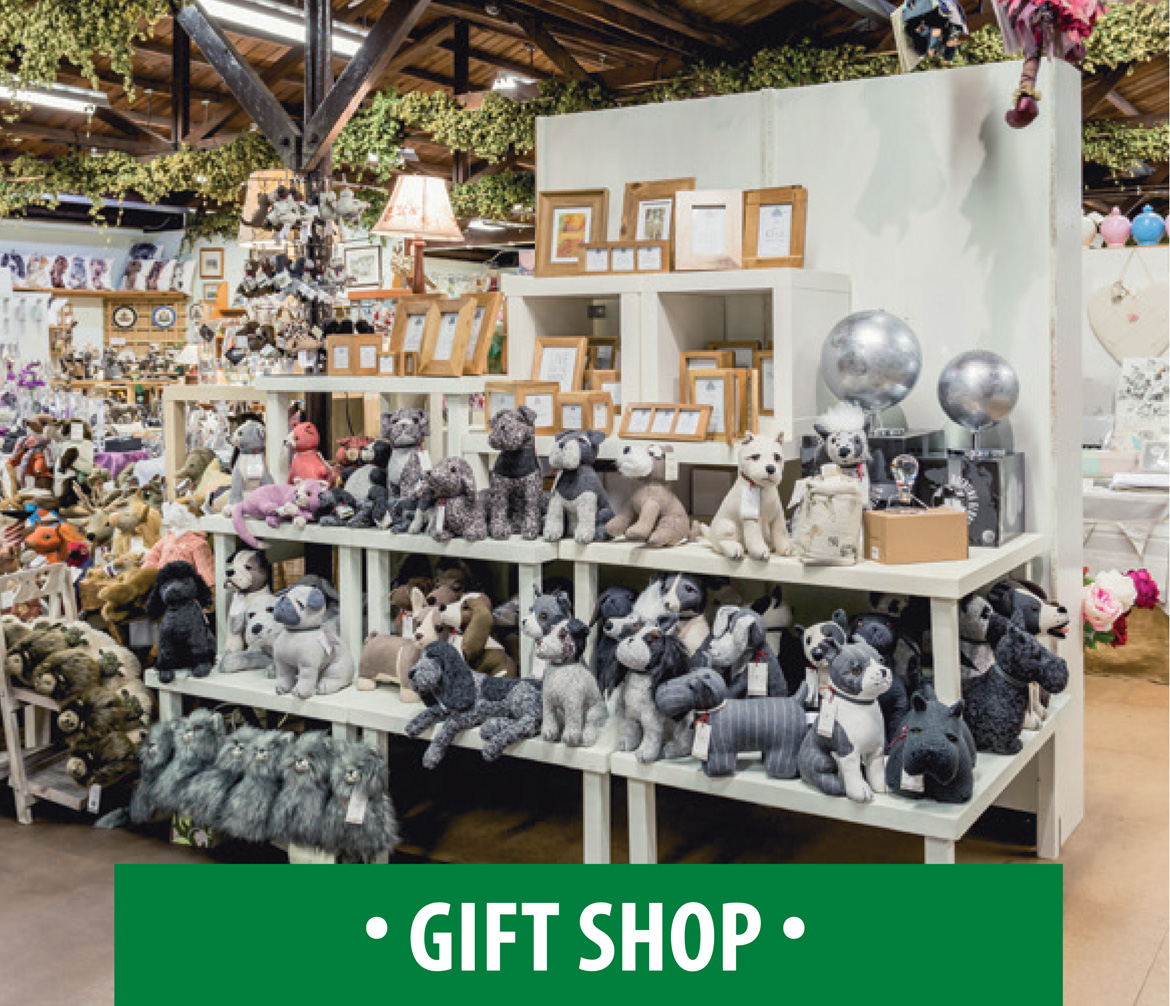 The Hop Pocket Gift Shop
