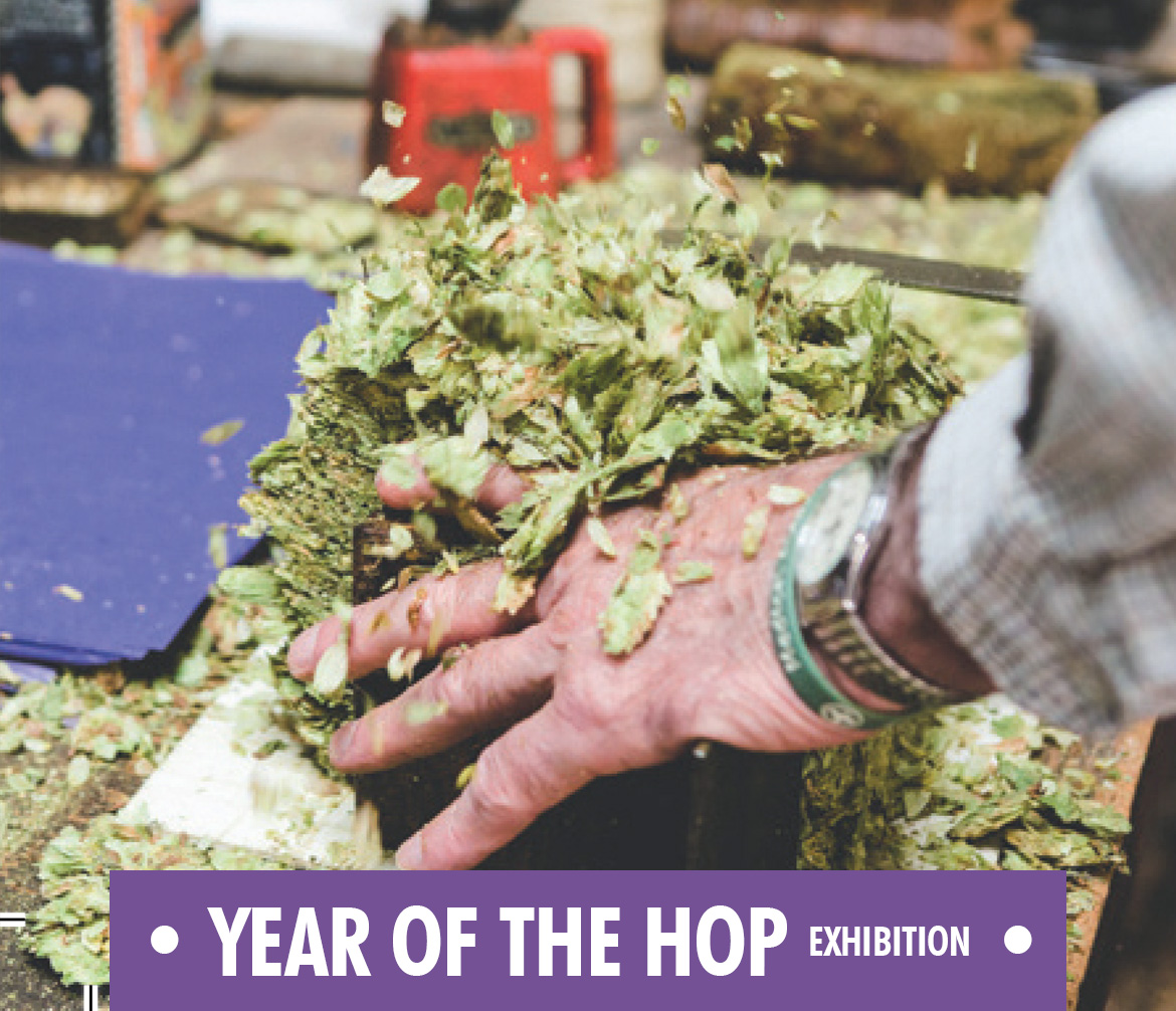 Year of the Hop Exhibition